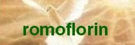 flroin-baner