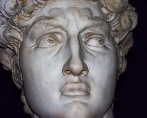 david-head-closeup-w-laser-s