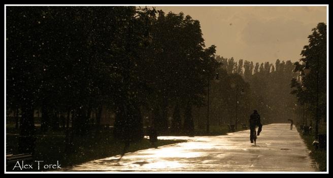 plimbare-prin-ploaie-copy
