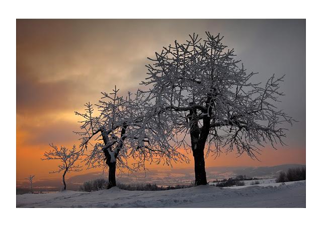 iarna-5