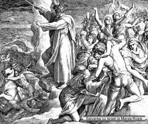 038-salvarea-lui-israel-la-marea-ro-351-ie