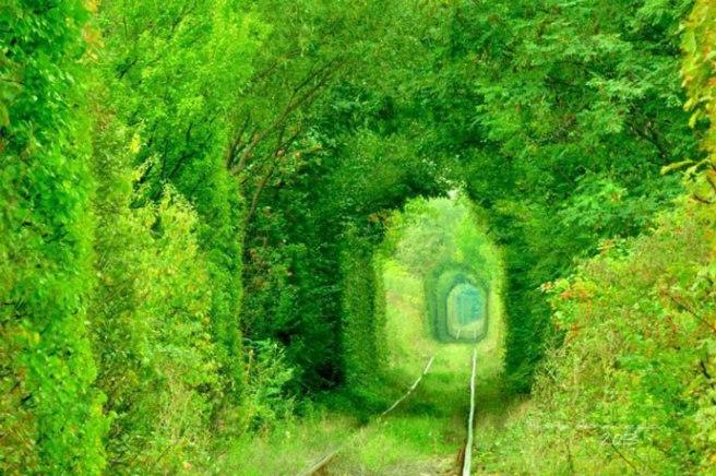 tunnel-of-love-e1431792553990
